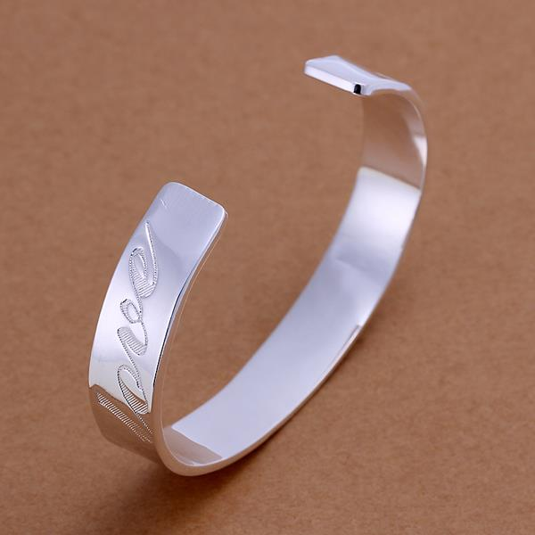 Wholesale Trendy Silver Round Bangle&Cuff TGSPBL020 0