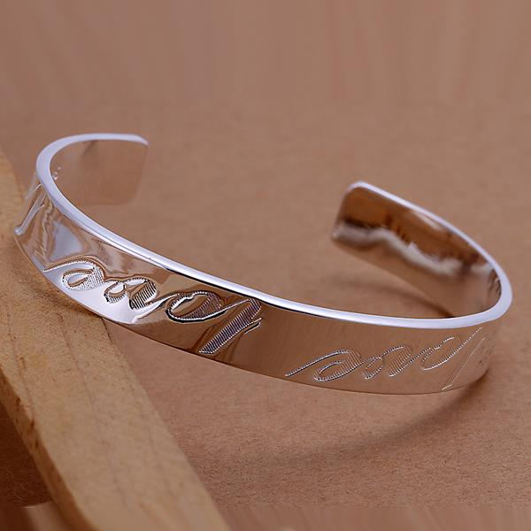 Wholesale Trendy Silver Round Bangle&Cuff TGSPBL020 1
