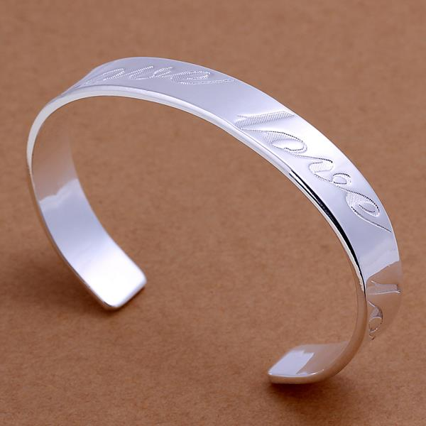 Wholesale Trendy Silver Round Bangle&Cuff TGSPBL020 2