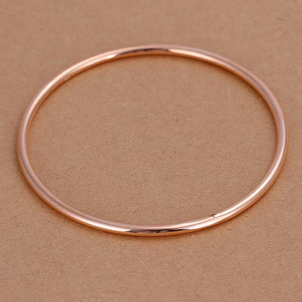 Wholesale Trendy Silver Round Bangle&Cuff TGSPBL091 2