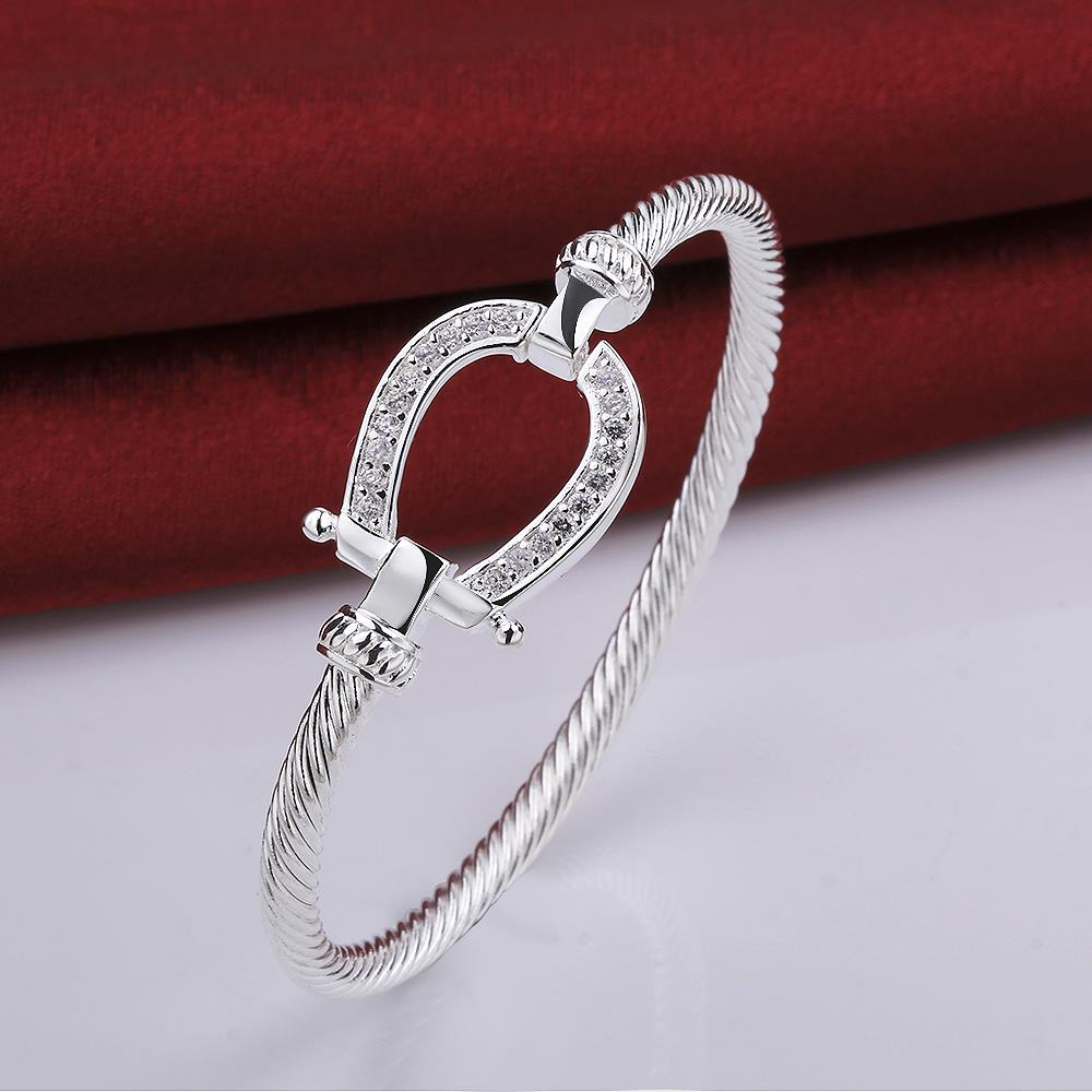 Wholesale Trendy Silver Water Drop CZ Bangle&Cuff TGSPBL141 1