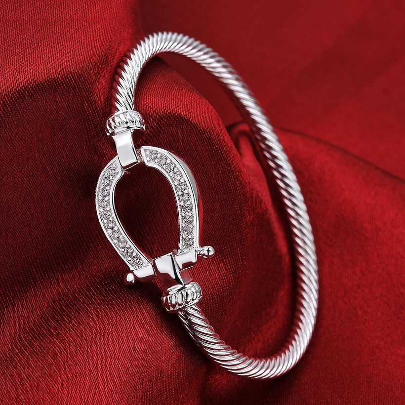 Wholesale Trendy Silver Water Drop CZ Bangle&Cuff TGSPBL141 2