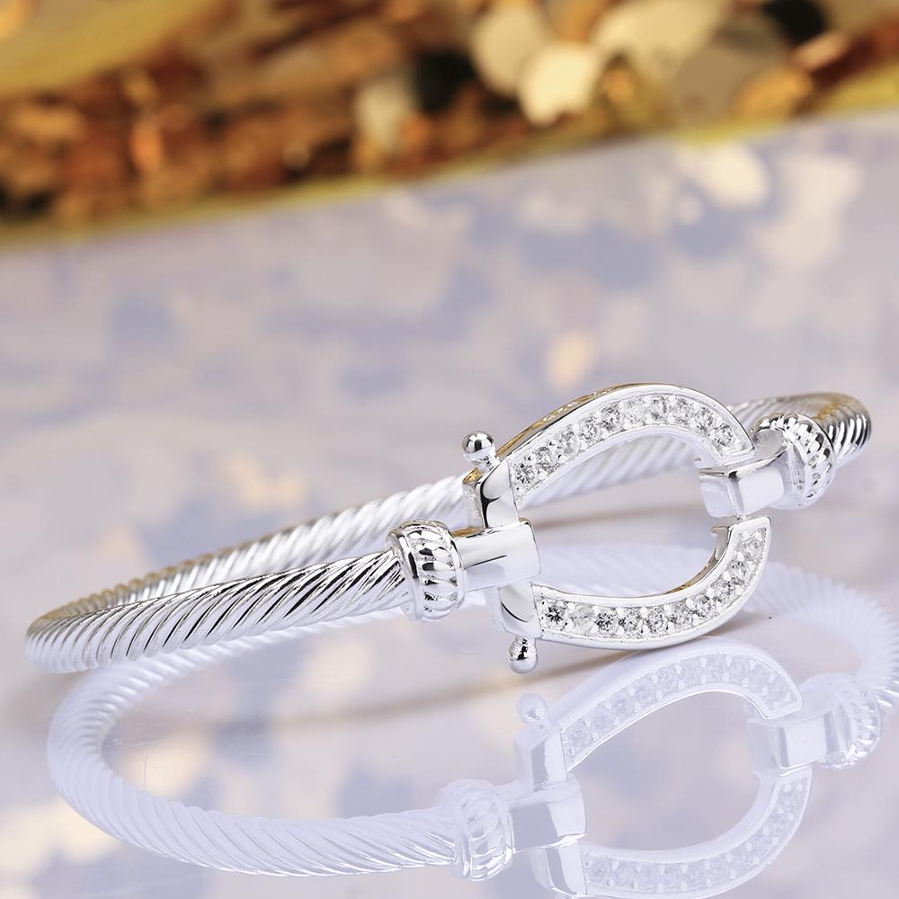 Wholesale Trendy Silver Water Drop CZ Bangle&Cuff TGSPBL141 4