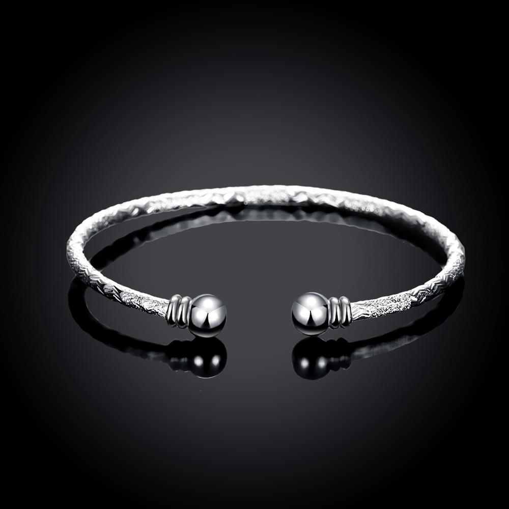 Wholesale Trendy Silver Round Bangle&Cuff TGSPBL156 1