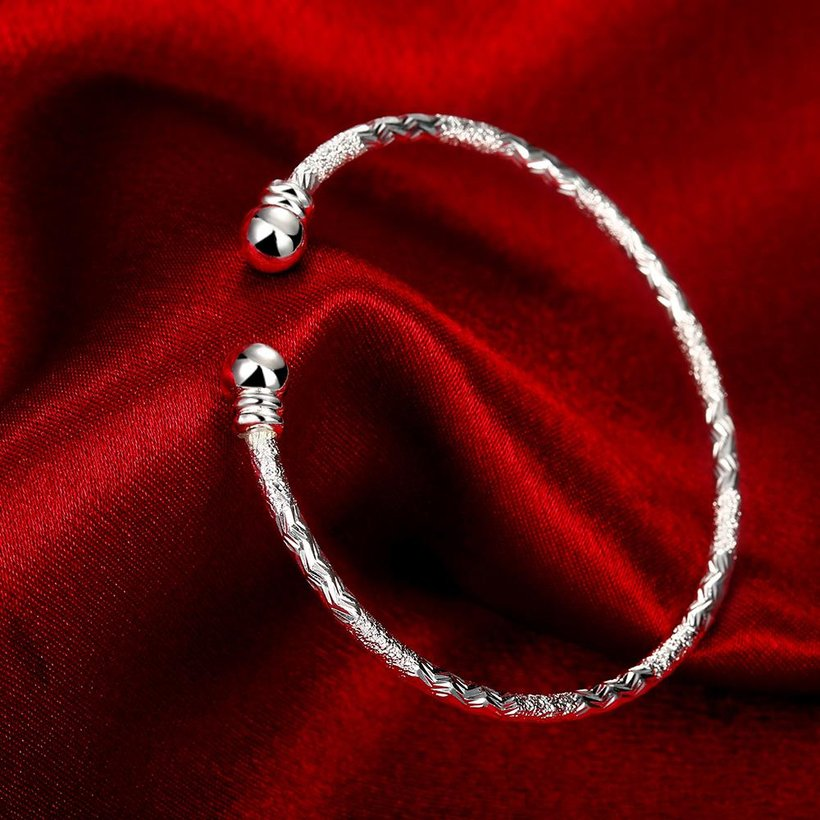 Wholesale Trendy Silver Round Bangle&Cuff TGSPBL156 2