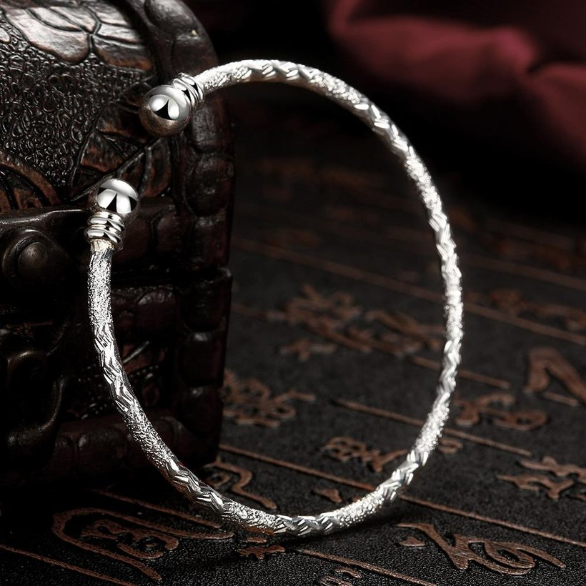 Wholesale Trendy Silver Round Bangle&Cuff TGSPBL156 3