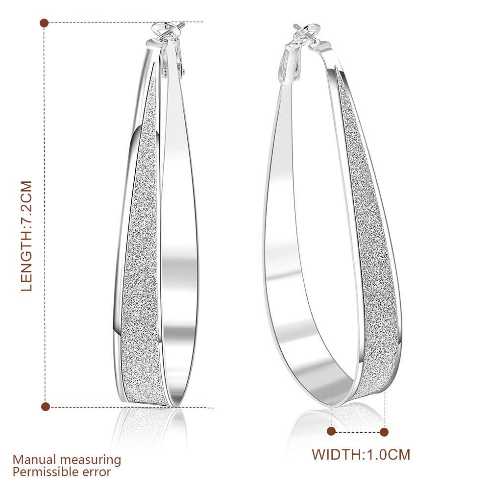Wholesale Selling in Europe and America Silver plated Round Frosted Hoop Earring For Women Lady Best Gift Fashion Charm party Jewelry TGHE020 4