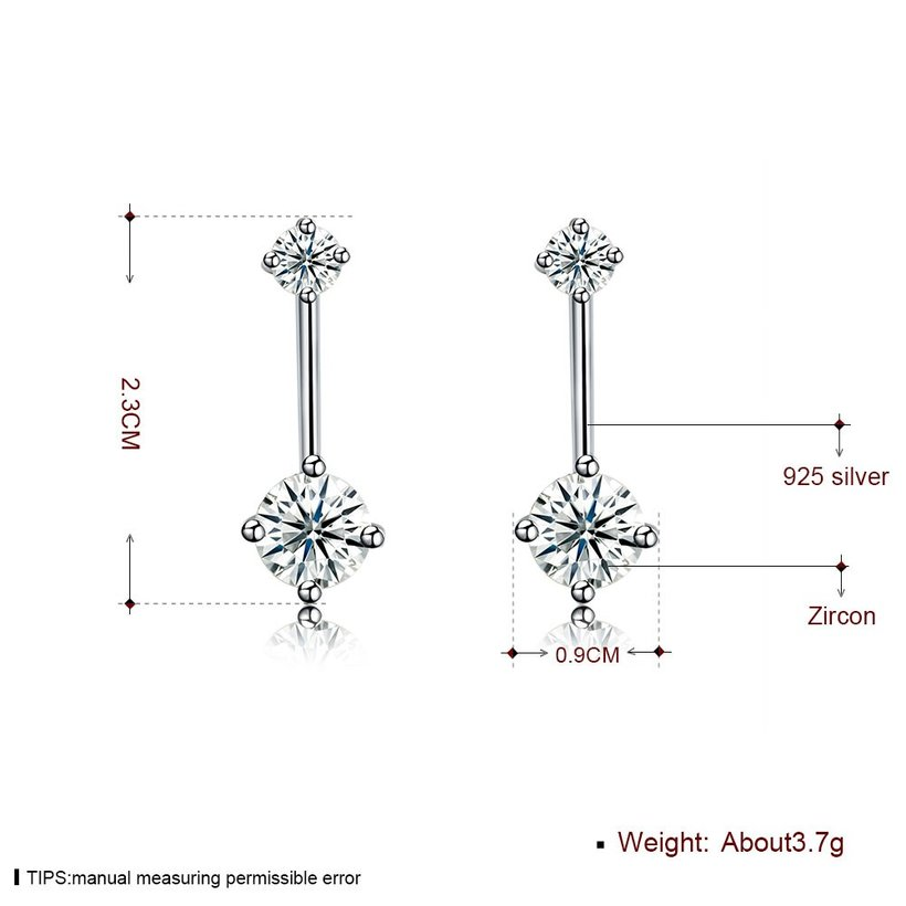 Wholesale Fashion delicate 925 Sterling Silver Four Claws Jewelry Shine AAA Zircon Earrings For Women Girls New Gift Banquet Wedding TGSLE098 5