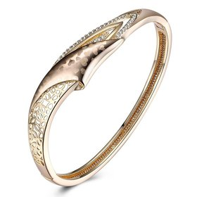 Wholesale Trendy Champagne Gold Hollow out CZ Bangle TGGPBL054